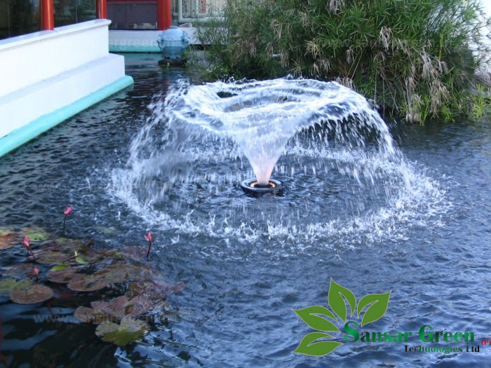 Small Floating Fountain manufacture in india - Sansar Green Technologies